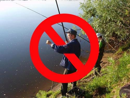 рыбалка запрет нереста сезон с лодки